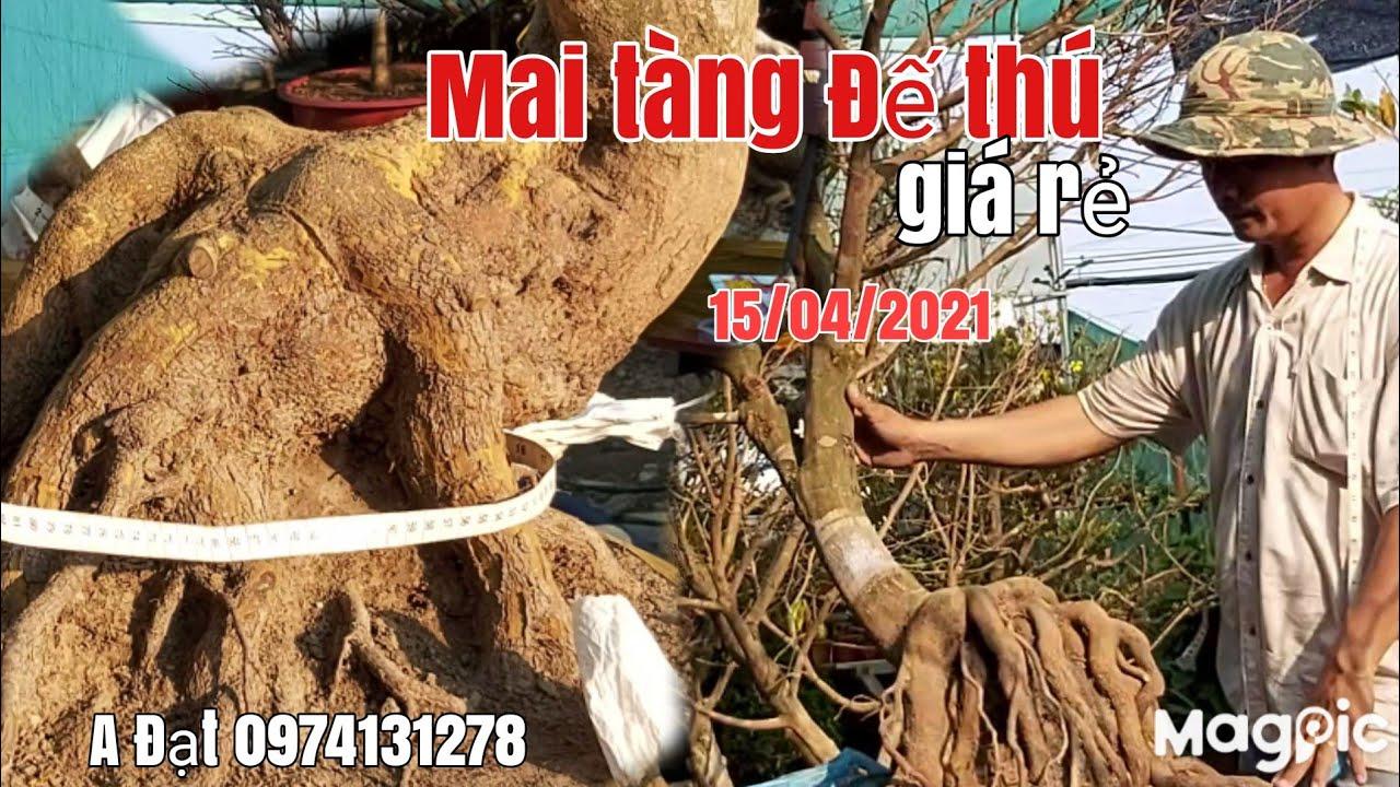Lô Mai đế thú quái tàng giá hữu nghị gặp A Đạt 0974131278 Sài Gòn