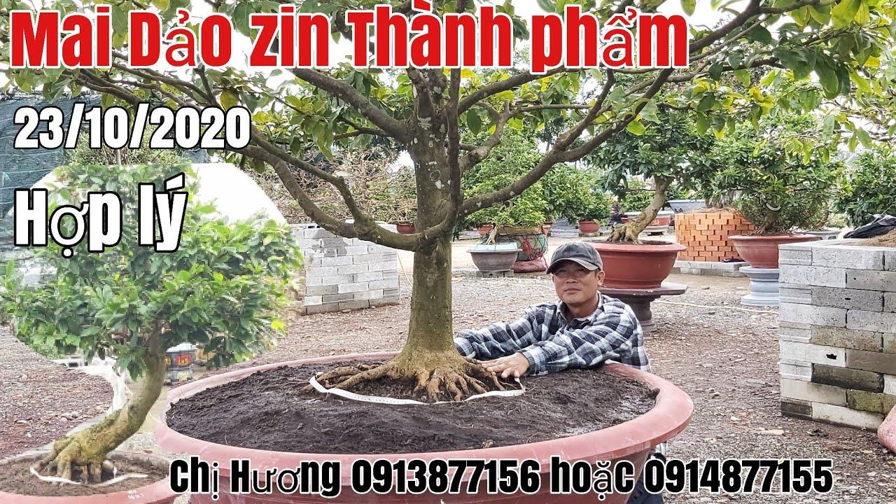Lô Mai thành phẩm đế đẹp gặp Chị Hương 0913877156 hoặc 0914877155 phường Bình Đức AG