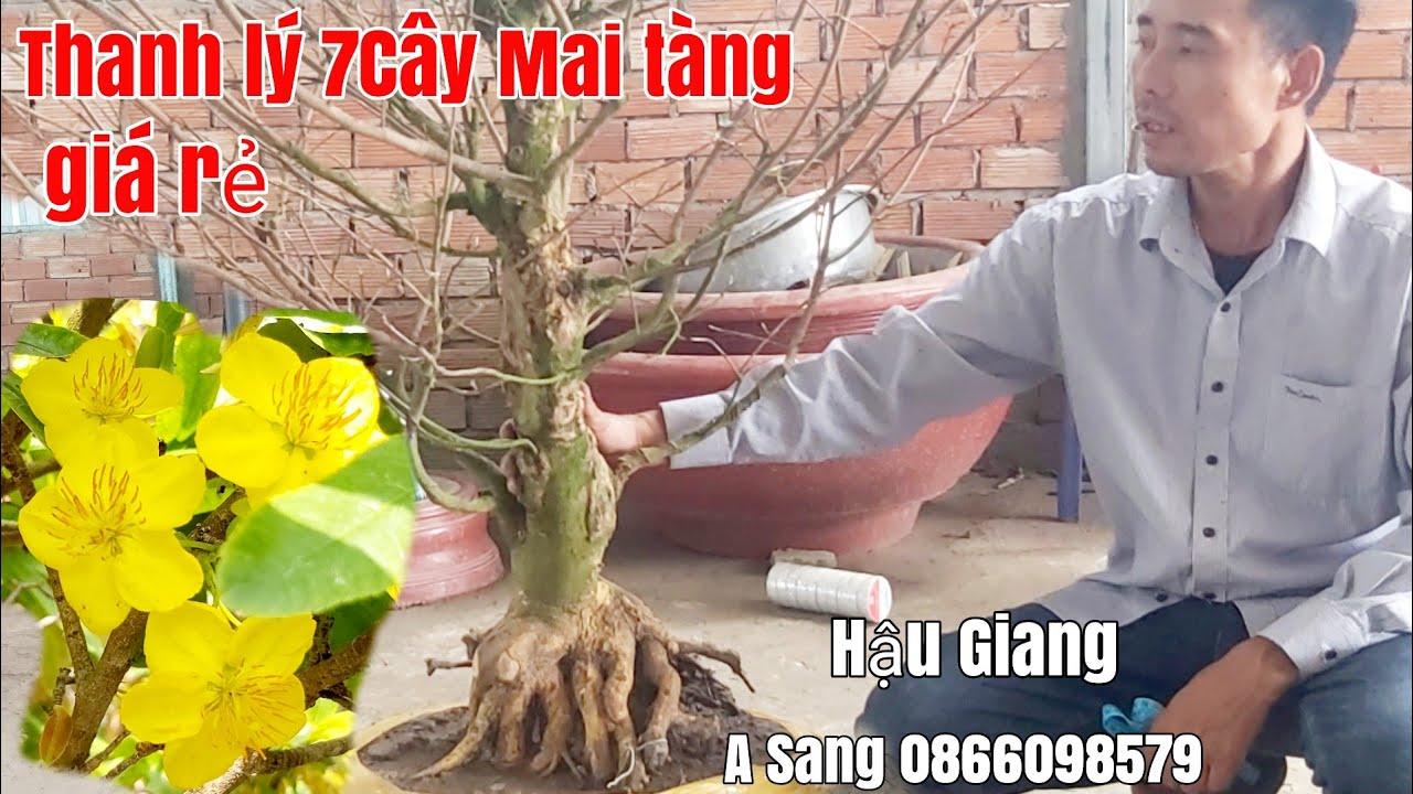 Mai tàng thiên nhiên đế đẹp giá rẻ gặp A Sang 0866098579 Hậu Giang