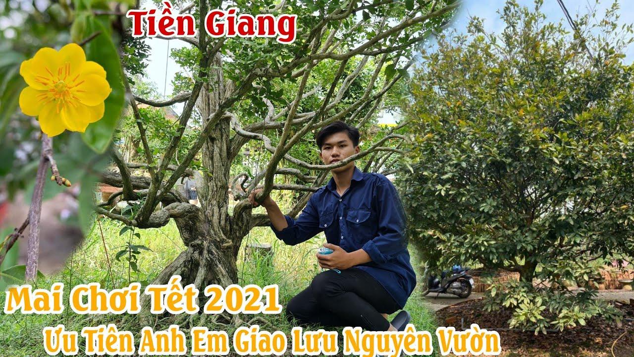Mô hình làm giàu 2021 nhờ cây kiểng ở Tiền Giang 0972752475 ít người tiết lộ