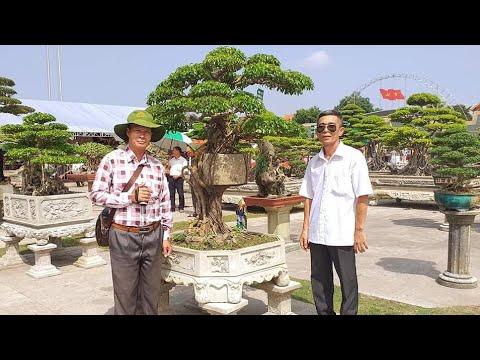 SH.3161.Rất độc đáo tác phẩm Chuyện tình cây cối tại triển lãm Thanh Hóa.