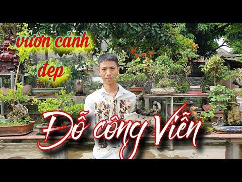 SH.4036. Thăm vườn Bonsai nhỏ đẹp Đỗ Công Viễn xã Việt Thuận huyện Vũ Thư Thái Bình.