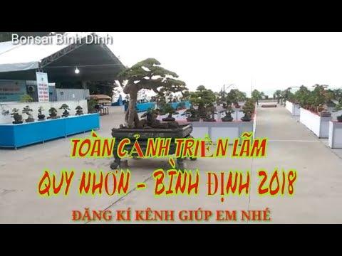 Toàn Cảnh Triển lãm Bonsai cây cảnh Quy Nhơn, Bình Định 2018 - Bonsai Binh Dinh