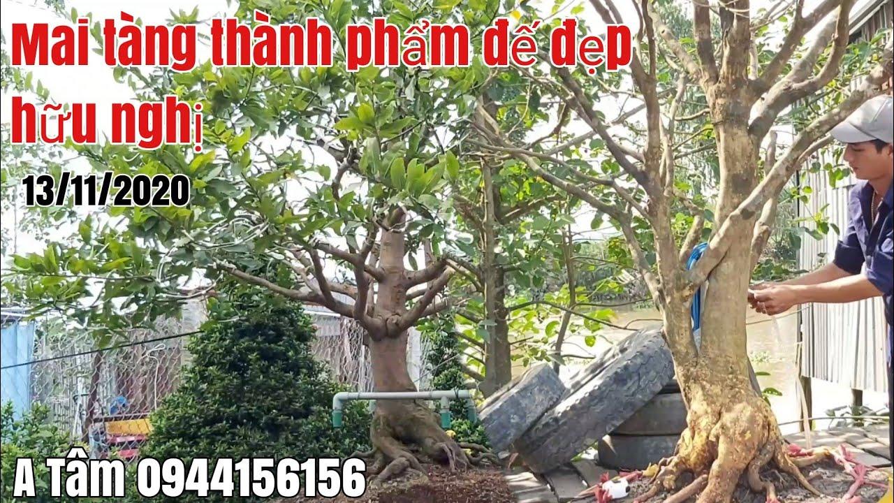 Mai tàng thành phẩm đế đẹp giá hợp lý gặp A Tâm 0944156156 huyện Tháp Mười tỉnh Đồng Tháp
