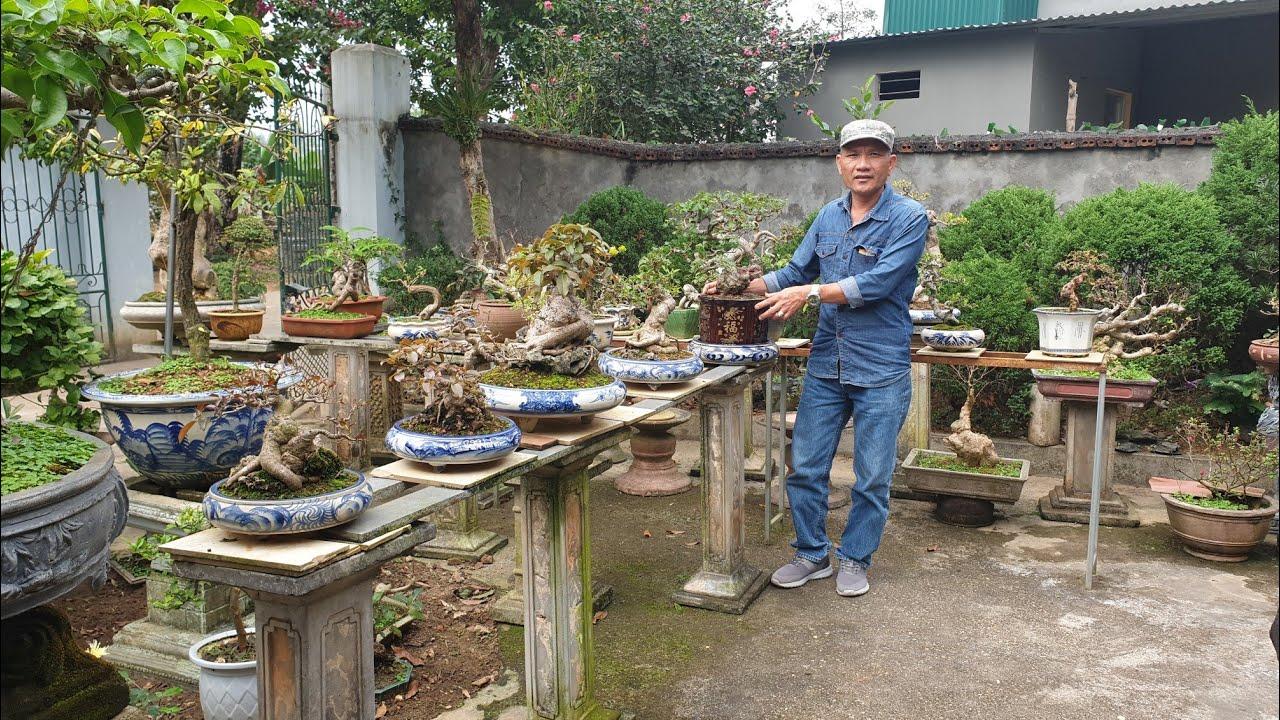SH.3494.Thăm vườn cảnh Hoàng Hải.Phù Ninh.Phú Thọ.