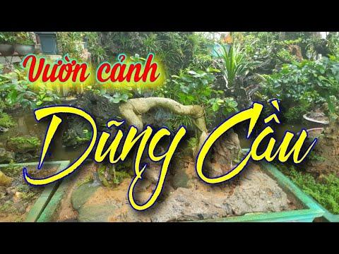 SH.4133. Thăm vườn cảnh Cape Dũng Cầu tại Thôn Gò xã Khánh Thượng Ba Vì Hà Nội.