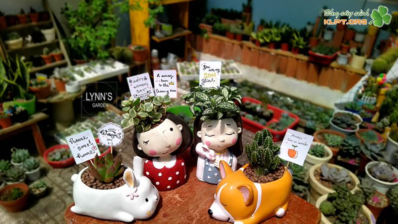 lynns-garden-klpt