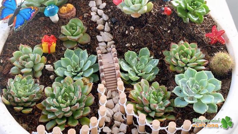 sen-garden-klpt